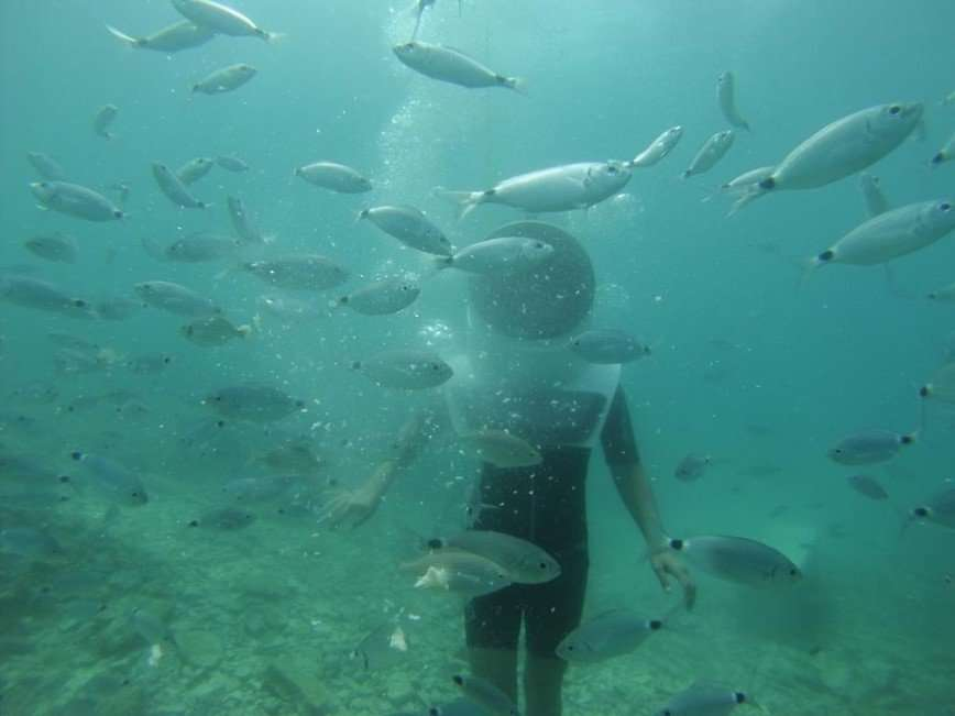 Велосипедные прогулки под водой в Хорватии
