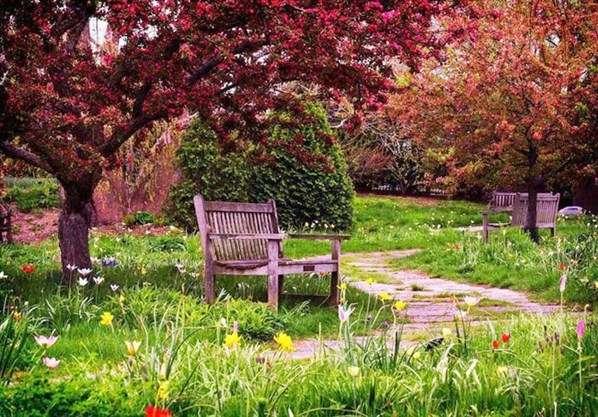 Маленькие радости загородной жизни